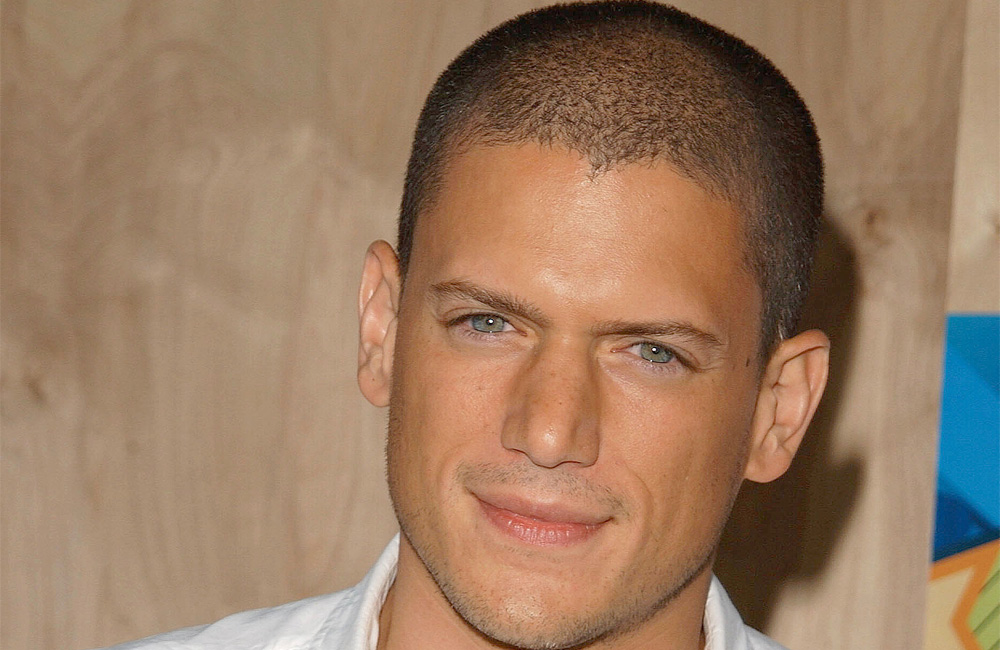 Wentworth miller, so hot